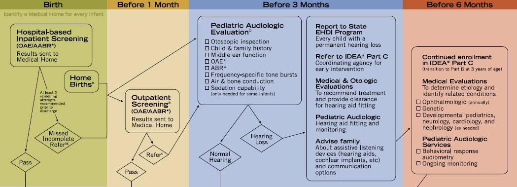 American Academy of Pediatrics Medical Home Flow Chart